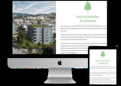Website-Design und Entwicklung
